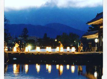 松本城の夜桜がとても綺麗でした。